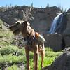 022 Murphy at McKay Falls