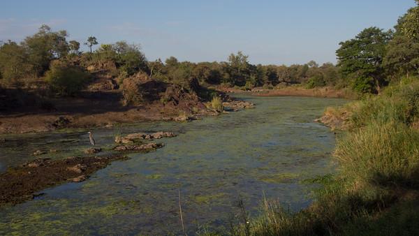 Sweni River, Kruger NP, South Africa.