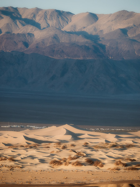 Mesquite Sand Dunes Early Morning