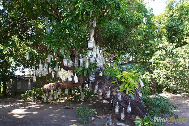 The Rum Tree