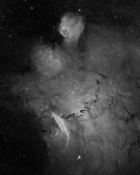 "IC 1274 ""BigToe"", near the lagoon. H-alpha 7 hrs unbinned. Toward 6 o'clock is planetary nebula M 1-41.<br /> <br /> What we see: A Teenage Mutant Ninja Turtle, dressed in the habit of a monk, of military persuasion. Turtle head at 12 o'clock, huge shoulder pads, a cross between a glowing prawn shell and a gladius (or short-sword) in the right hand. A wonderful black Chinese dragon for a belt. A blurry shield held in the left hand.<br /> <br /> Aspen CG16M, 3nM Ha filter, 20"" PlaneWave CDK. North up. 0.55 sec arc/pixel. Field approx 30 min arc."