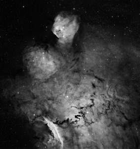 """BigToe in H-alpha. The bright toe-like region at the top (North) is IC1274 near the Lagoon. The whole image is reminiscent of a turtle swimming up the page. There is a beautiful  bright region at seven o'clock that looks like the shell of a crayfish. To the right of that is a spectacular snakeing dust track that looks like a dragon.   3nM H-alpha. 3 x 1hr subs. Aspen CG16M on 20"""" PlaneWave. Field 35' arc. All processing done with our own GoodLook 64."""