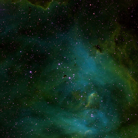 Part of Lambda Centauri nebula IC2948. Perhaps the multiple intense black Bok-Bok-Bok globules explain why it is called the Running Chicken nebula. There are certainly some feathers about. Very nice shock front at the top of the image. Ha/OIII/SII 2 hrs each.