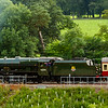 Royal Scot @ Bowland 28th August