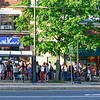 Line for Ramen in Porter Square
