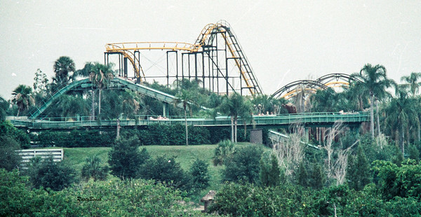 Bush Gardens 1977-79-16