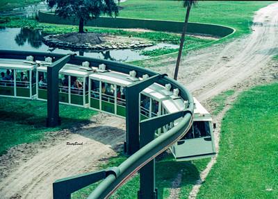 Bush Gardens 1977-79-24