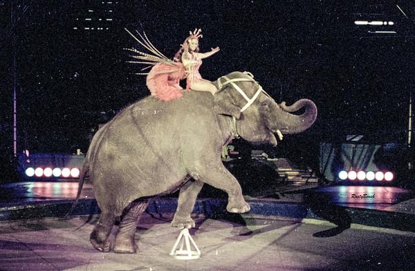 Lee Co  Circus 1979-3