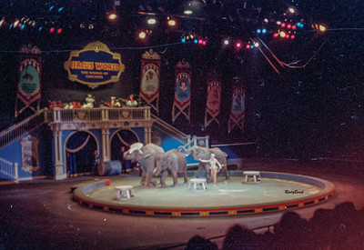 Circus World 1984-10