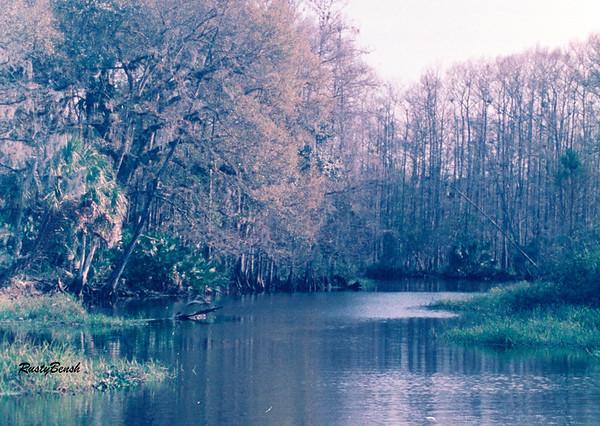 Fisheating Creek NOV88 (19)