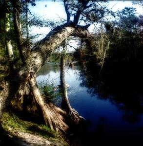 Creek Camp-C