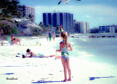 girl feeding gulls-4