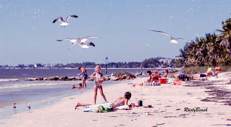 girl feeding gulls-2