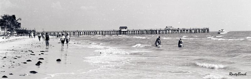beach front low tide