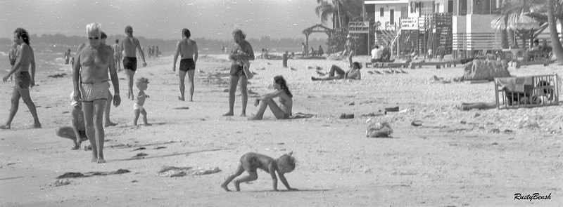 Sanibel beach-3