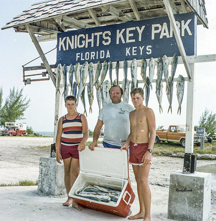 Dolphin Catch July82