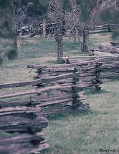 Stones River 1994-39