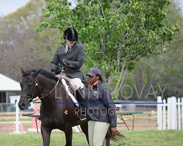 Texas Rose Horse Park March 2012