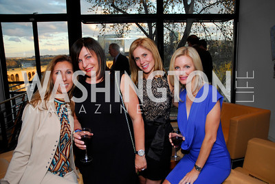 Pam Taylor, Anna Trone, Stacy Lubar, Shari Kopelina, Arc Reception, April 5, 2011, Kyle Samperton