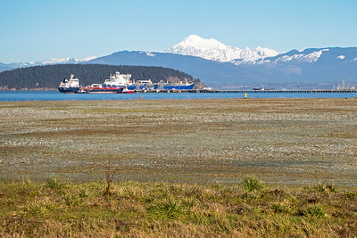 Anacortes with Mount Baker in background.