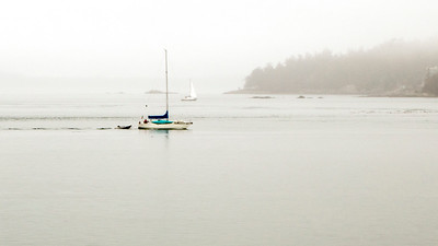 3-17 San Juan and Orcas Islands, Wa