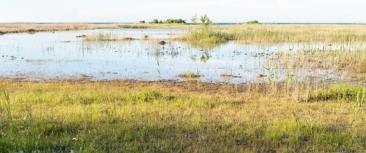 Eagle Bay, June 2014