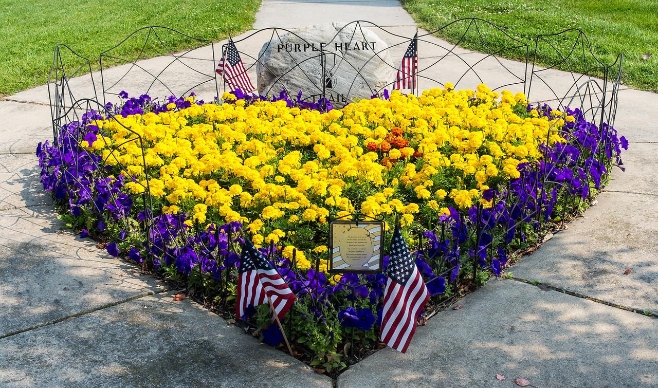 Veteran's Memorial Park, July 2015