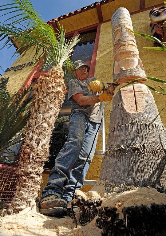 . Tiki Dave carves a tiki out of a palm tree outside the Art House in Long Beach, CA. on Sunday, February 16, 2014. (Photo by Sean Hiller/ Daily Breeze).