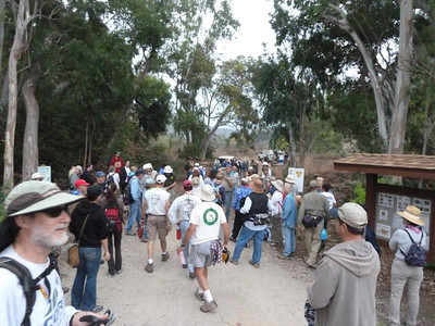 After registering, volunteers meander down to the area where they'll join a work crew