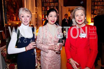 Joan Mulcahy, Yoriko Fujisaki, Nina Pillsbury. Trust for the National Mall reception to celebrate the 4th Annual Benefit Luncheon. Photo by Tony Powell. C. Boyden Gray residence. March 8, 2011