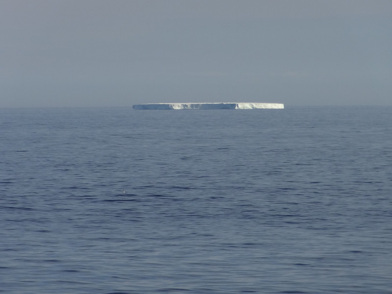 DSC02739 max zooming in on iceberg