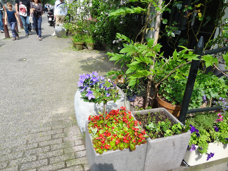 DSC01573 flower pots at corner of musium row where shuttle bus dropped us off and picked us up for first two days while ship was undergoing repairs to stabilizer.