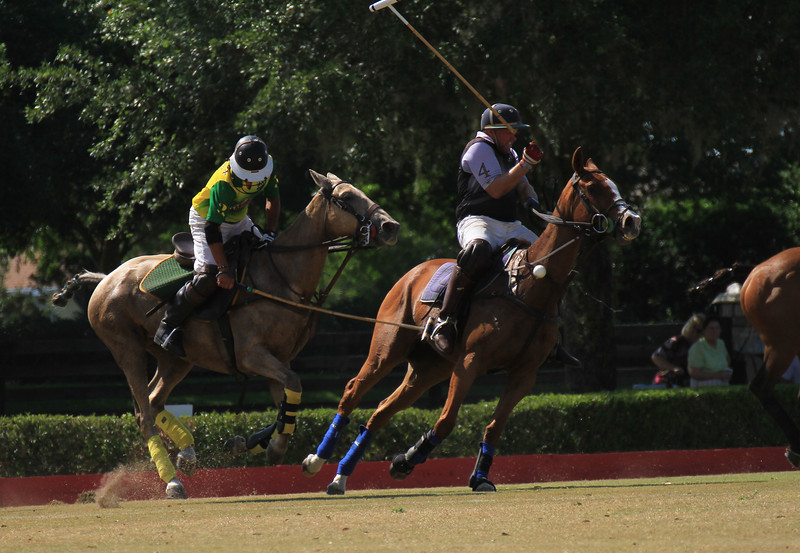 Note the ball is in mid air at the horses neck in front.