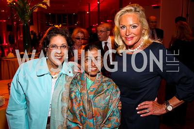 Shahin Mafi, 2011 Honoree Sunitha Krishnan, Deborah Sigmund. 10th Annual Vital Voices Global Leadership Awards. Photo by Tony Powell. The Kennedy Center. April 12, 2011