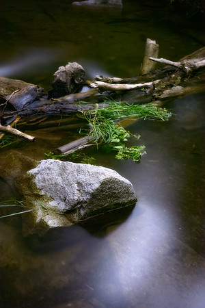 Rock in a Stream