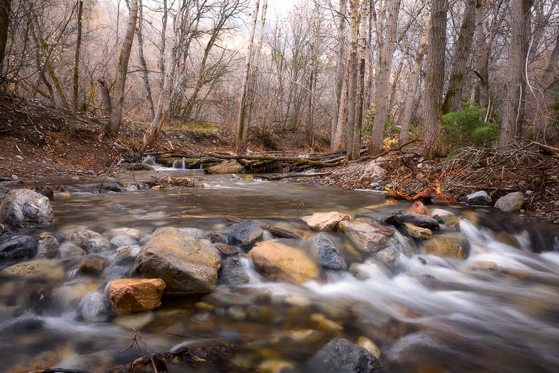Santaquin Canyon Creek