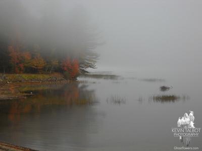 Webb Lake Mount Blue State Park