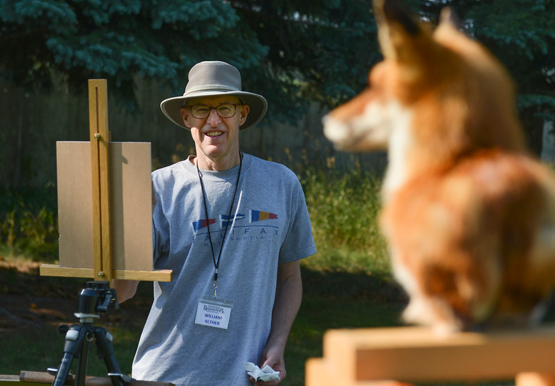 Justin Sheely | The Sheridan Press<br /> William Alther of Denver, Colorado, paints a fox for the quick draw event of the Bighorn Rendezvous Art Show and Sale at the Brinton Museum Saturday, Aug. 4, 2018.