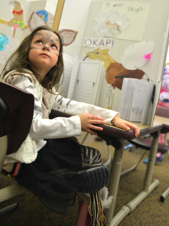 Justin Sheely | The Sheridan Press<br /> <br /> First grader Kelsie Adamson, as a Okapi, sits at her desk during the Animal Wax Museum event at Woodland Park Elementary School Friday, Feb. 9, 2018. First-grade students researched animals and gave a presentation on their findings through display boards, report books and costumes.