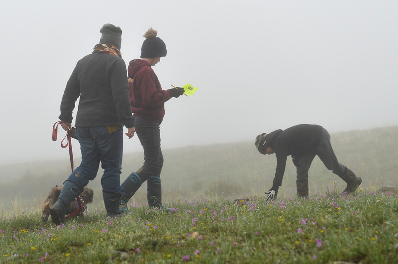 Justin Sheely | The Sheridan Press<br /> Polly Howard, left, walks her dog with her children Sylvia Howard and Otto Howard, right, during the Unplug nature scavenger hunt at Red Grade Trail near Big Horn Saturday, May 19, 2018. The event was hosted by the Sheridan Community Land Trust in collaboration with Science Kids to get children outside and observing nature with all five senses.