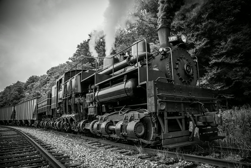 """Black Diamonds and Irony: This image shows Cass's legendary Western Maryland Shay No. 6, coupled to a cut of coal hoppers alongside the former lumbering town of Spruce, West Virginia. 85 years ago, the sounds of whirring sawblades and steam exhaust echoed throughout this valley. One of workaday Shays assigned to this line was a 150 ton behemoth, the Greenbrier Cheat & Elk's No. 14. By the end of the roaring twenties, the rails at Spruce were sold to the Western Maryland Rwy and No. 14 was deemed surplus. At the height of the Great Depression, the No. 14 found its way to a new railroad, hauling coal for the WM in Maryland. In 1942, the engine was involved in a runaway accident, placing the then renumbered Western Maryland No. 5 out of service. To keep up with wartime coal demand, Western Maryland ordered a new Shay from Lima. No. 6 arrived on property in May of 1945 and hauled coal hoppers for four short years, before retirement. Through an amazing tale of preservation, the very locomotive built to replace her wrecked sister now plies old No. 14's """"home"""" rails on the former GC&E at Spruce. Though the mills are silent, steam still echoes through this lush valley."""