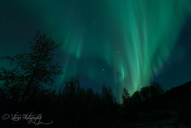 Never stop marveling - Aurora Borealis, Fairbanks, AK