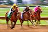 """Frantic Finish""<br /> Keeneland Race Course<br /> Lexington, KY"