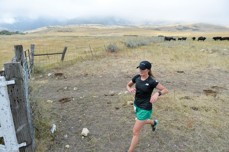 Ashleigh Fox | The Sheridan Press<br> Sarah Sommers of Sheridan runs past cattle and a cloudy backdrop at the last aid station during the Wolf Creek Wrangle Saturday, Sept. 15, 2018. Sommers finished fourth overall in the half marathon.