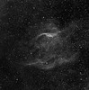RCW 104, a Wolf-Rayett nebula, in H-alpha. 5 hrs in 1hr subs. Aspen CG16M on 20 inch PlaneWave.