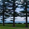 Wollonong Coast
