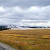 Geyser Field, Yellowstone National Park