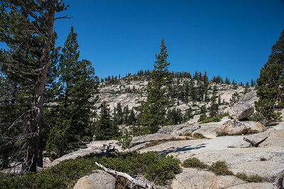 Olmstead Point-9145