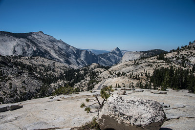 Olmstead Point-9151