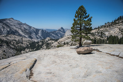 Olmstead Point-9169
